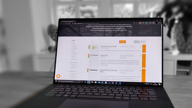 TYPO3 GmbH Launches All-New Professional Service Listing